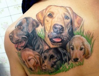 Awesome coloured dogs tattoo on shoulder blade