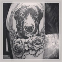 Black and gray dog with roses tattoo