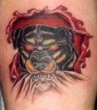 Red eyed rottweiler  skin rip tattoo